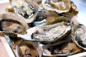 牡蠣鍋 レシピ 味噌 簡単 美味しい 作り方