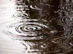 雨 自転車通勤 雨の日